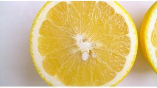 壊血病とレモン 料理科学の森