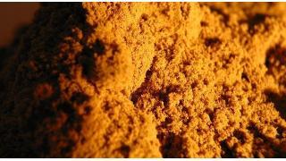 カレー粉と調味料の組み合わせ 料理科学の森