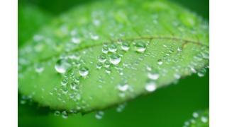 表面張力について 料理科学の森