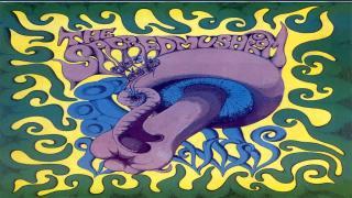 09. The Sacred Mushroom
