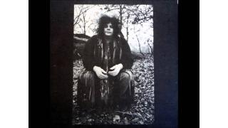 361. The Leslie West Band