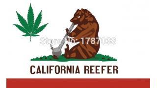 499. California