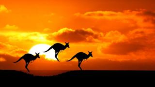534. Australia