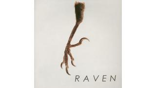 737. Raven
