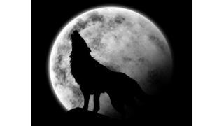ワンナイト人狼 ルール。