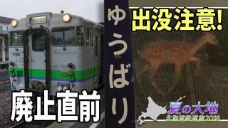 北海道鉄道旅2018夏 Chapter-11の解説