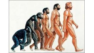 人類の歴史から考える、個々の底辺がこれから生き残る方法