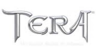 【MMO/TERA】思い出の装備品達