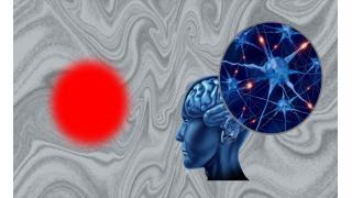 心脳問題への挑戦