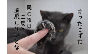 MIX等のご依頼について(2)