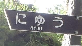 なつやま!(にゅう編)