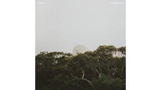 2014年アルバム10選(fuyuru0)