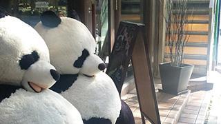 ペンギンカフェとぱんだカフェにいってきたよ!in 名古屋