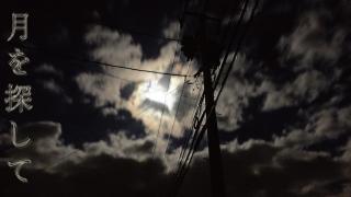 月を探して
