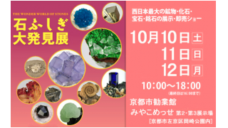2020 京都ミネラルショー 石ふしぎ大発見展 番外