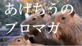 数十億円の駄作と豚