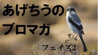 日本と言う国に対するモノ