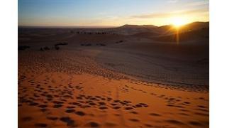 モロッコのミントティーは激甘い。