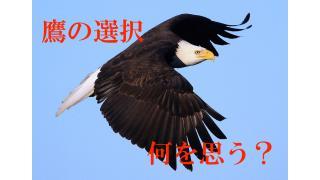 【やる気の心理学】話題の動画「鷹の選択」を観ても。。。