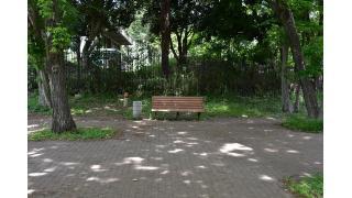 東京都武蔵野市武蔵野中央公園のベンチ