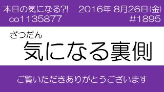 あっと散歩「激辛グルメ祭り2016」(2)