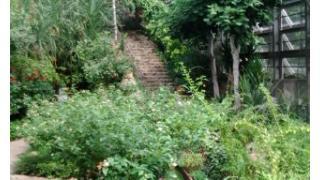 40年ぐらいぶりに多摩動物公園(昆虫館)に行ってみた