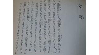 「文鳥(夏目漱石著)」