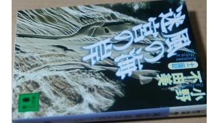 「風の海 迷宮の岸(小野不由美著)」
