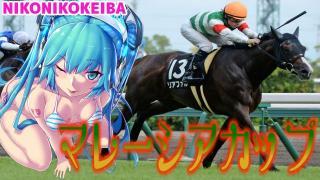 【競馬】中京 マレーシアC&福島 安達太良S【夏は穴馬】