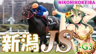 【競馬】新潟ジャンプS(J-G3)【簡易】