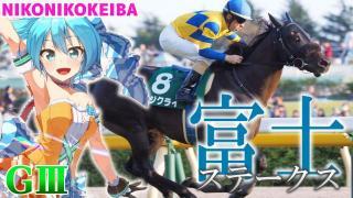 【競馬】東京 富士S(G3)【(^ρ^)←よくわかってない】