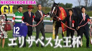 【競馬】京都 エリザベス女王杯(G1)&福島記念(G3)【気持ちふわふわ】
