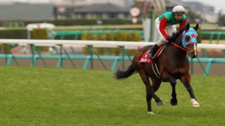 【結果】マイルチャンピオンS(G1)&福島記念(G3)【大逃げ馬の引退】