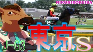 【東京】東京ジャンプS(J-G3)【柔軟かつ速さが大事】