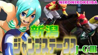 【競馬】新潟 新潟ジャンプステークス(J-G3)【障害戦は高齢馬が強し】