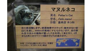 上野動物園でいろいろ撮って来た!