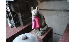 初詣におすすめ!赤坂の神社とお寺と猫の旅!!!