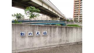 江戸川区内の橋約100箇所で一番役に立たない橋 チラシ9号