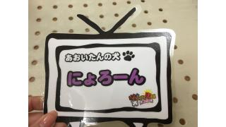 大阪町会議の小話。