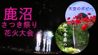 鹿沼さつき花火大会 と 秩父華厳の滝+天空のポピー