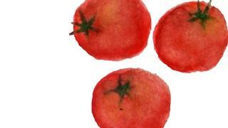 プチトマト!
