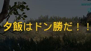 ドンカツできたー(≧▽≦)