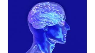 脳科学について10の事実 (米研究)