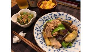 7月25日 茄子ととうがらしと豚肉の炒め物