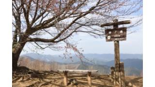御嶽駅~棒ノ嶺の縦走をしてきました