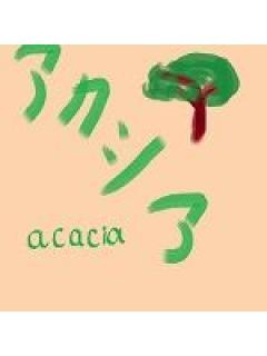 acacia(アカシア)のブロマガ