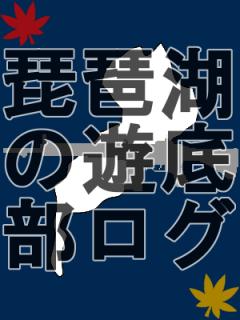 琵琶湖の遊底部ログ