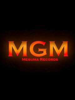 メグマレコードのブログ