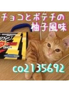 猫とゲーム好きの大人のおなご日記