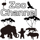 Video search by keyword ホラー - ZOOチャンネル